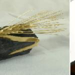 Del Don Bosco a la Espiga de Oro: así ha evolucionado el palmarés de Seminci
